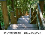 Steep Wooden Stairs With Many...