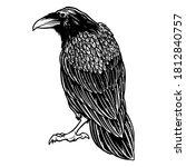 Black Evil Raven For Halloween...