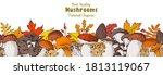 edible mushrooms hand drawn....   Shutterstock .eps vector #1813119067