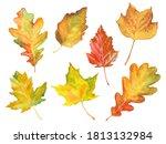 set of watercolor autumn tree...   Shutterstock . vector #1813132984
