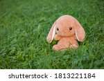 Soft Toy On The Grass In The...