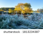 Fall Scenery. Frost Morning....