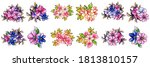 flowers set. collection of...   Shutterstock .eps vector #1813810157