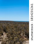 Small photo of Bucolic panoramic landscape of the Valdes Peninsula in northern Patagonia near Puerto Madryn city center in the Chubut province in Argentina. Natural habitat of Magellanic penguins and Sea Lions