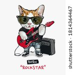Cute Cat Rock Star Playing...