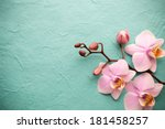 pink orchid on a wooden... | Shutterstock . vector #181458257