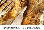 touchwood texture. cracked wood ... | Shutterstock . vector #1814609201