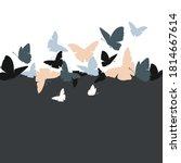 flying butterfly vector... | Shutterstock .eps vector #1814667614