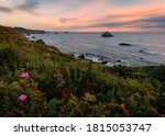 Flowers In The Foreground Of A...