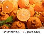Orange Fruit With Orange Slices ...