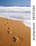 human footprints leading away... | Shutterstock . vector #18151264