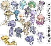 Set Of Multi Colored Jellyfish...