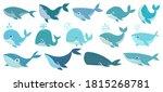 Cute Whales. Marine Life...