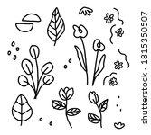 line art illustrations of...