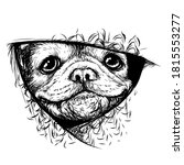 a bulldog puppy. a graphic ... | Shutterstock .eps vector #1815553277