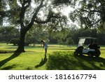Woman Playing Golf In The Golf...