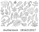 set of decorative leaves and... | Shutterstock .eps vector #1816212017