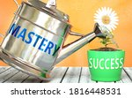 Mastery helps achieving success - pictured as word Mastery on a watering can to symbolize that Mastery makes success grow and it is essential for profit in life and business, 3d illustration