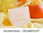 golden autumn maple leaves on... | Shutterstock . vector #1816805147