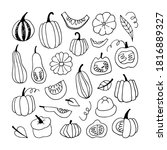 vector set with pumpkins....   Shutterstock .eps vector #1816889327