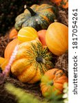 Thanksgiving Autumn Decorative...