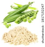Pea Protein Powder With Peas On ...