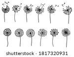 Set Of Stylized Dandelions....
