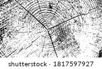 black and white background with ... | Shutterstock .eps vector #1817597927