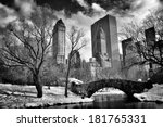 New York City   Central Park I...