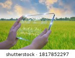 Small photo of Business woman using smart tablet,rice fields production control,concept agricultural product control technology,to agriculture future trading world market,track productivity,satellite for Agriculture