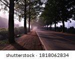 asphalt road in Korea, rural roadway - stock photo
