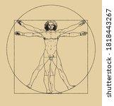 Vitruvian Man Drawing By...