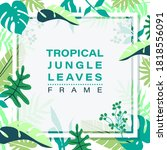 frame of tropical jungle leaves ... | Shutterstock .eps vector #1818556091