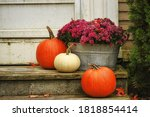 Red And White Pumpkins And...