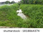 Stagnant Water Drainage Due To...