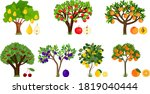 set of different fruit trees...   Shutterstock .eps vector #1819040444