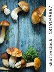 Mushrooms Cep In Autumn Season...