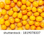 Fresh Ripe Sea Buckthorn On...