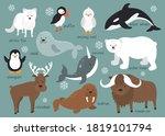 arctic animals background set....   Shutterstock .eps vector #1819101794
