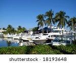 boats docked at a south florida ...