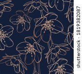 cherry  sakura flowers bloom... | Shutterstock .eps vector #1819382087