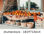 Red  Green  White Pumpkins In...