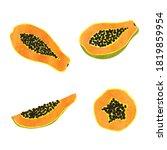 set of watercolor papaya fruit. ... | Shutterstock .eps vector #1819859954