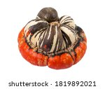turban squash  also known as... | Shutterstock . vector #1819892021