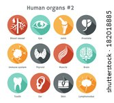 vector round icons of human... | Shutterstock .eps vector #182018885