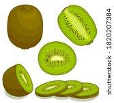 vector kiwi. set of whole ... | Shutterstock .eps vector #1820207384