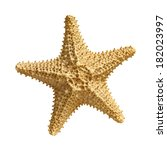 starfish  isolated on white... | Shutterstock . vector #182023997
