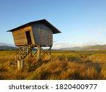 Bird Watching Logs Cabin...