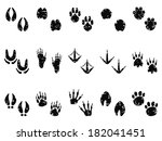 grungy animal footprint track... | Shutterstock .eps vector #182041451
