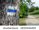 Blue Tourist Sign On A Tree....